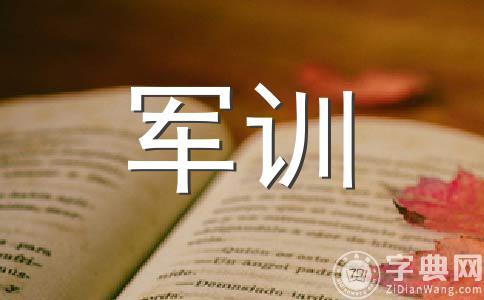 【必备】军训作文(通用八篇)