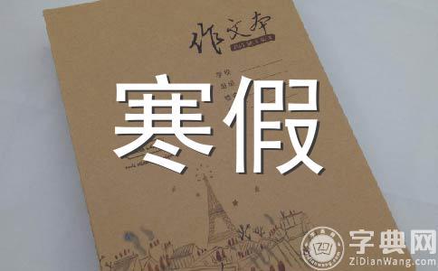 【精华】寒假作文集锦12篇