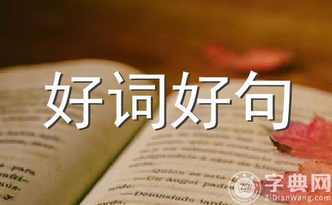 【精选】端午节祝福800字作文(精选五篇)